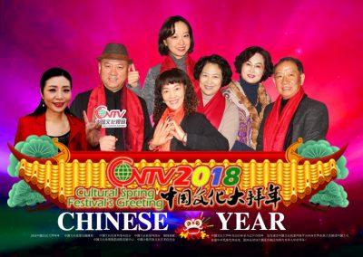 2018中国文化大拜年