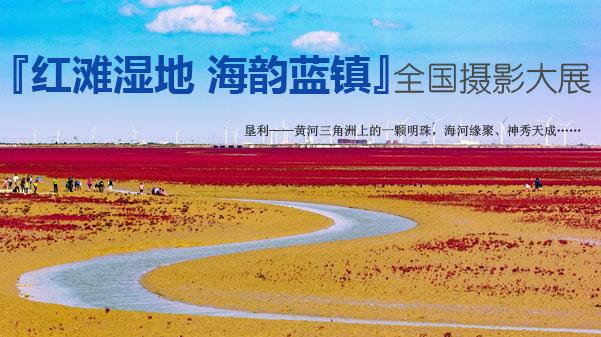 """""""红滩湿地 海韵蓝镇""""全国摄影大展通稿"""
