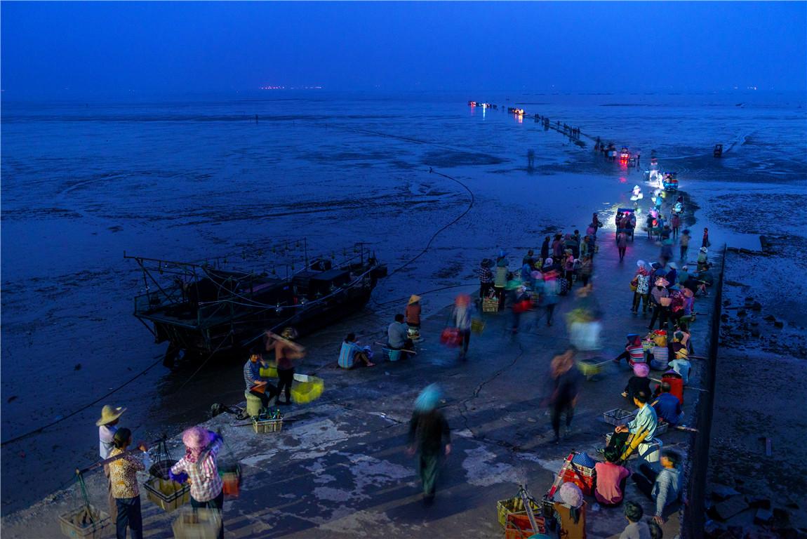 """首届""""大美渔村 平安渔业""""中国渔业摄影展入展作品展示"""