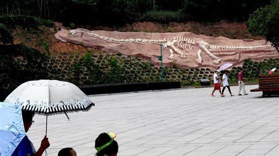 走进恐龙遗迹园 感受远古生命奇迹