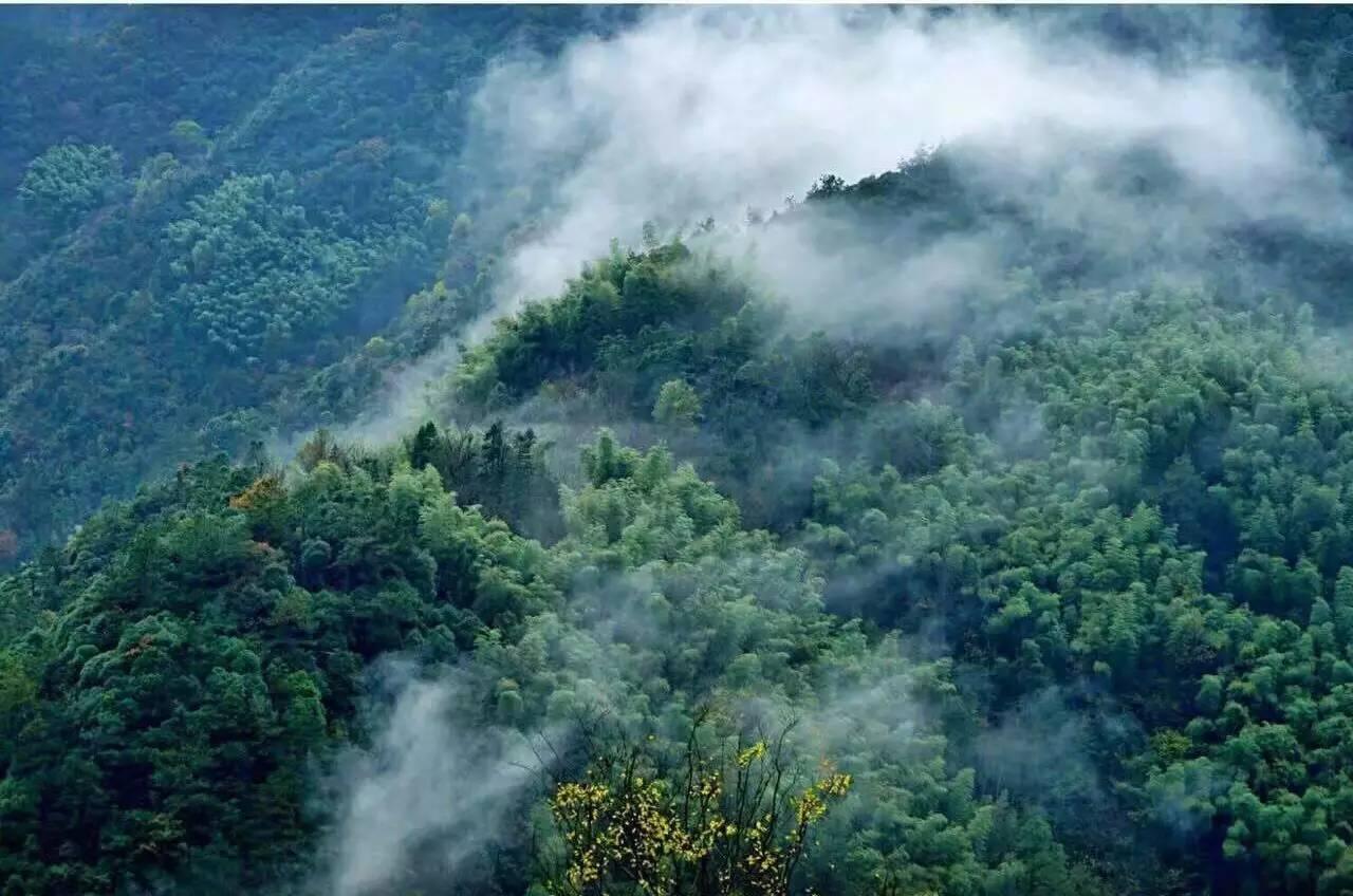 与静谧的山野之间,体验品质生活