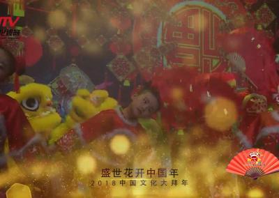 春晚嘉年华——《盛世花开中国年》