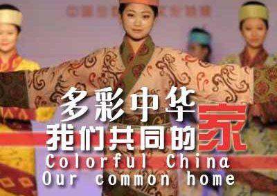 """""""多彩中华·我们共同的家""""文化特展在南京开幕"""