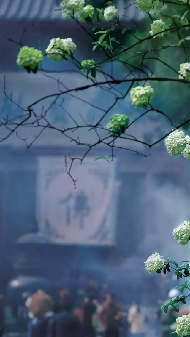 黛青色,视觉中国的平平仄仄