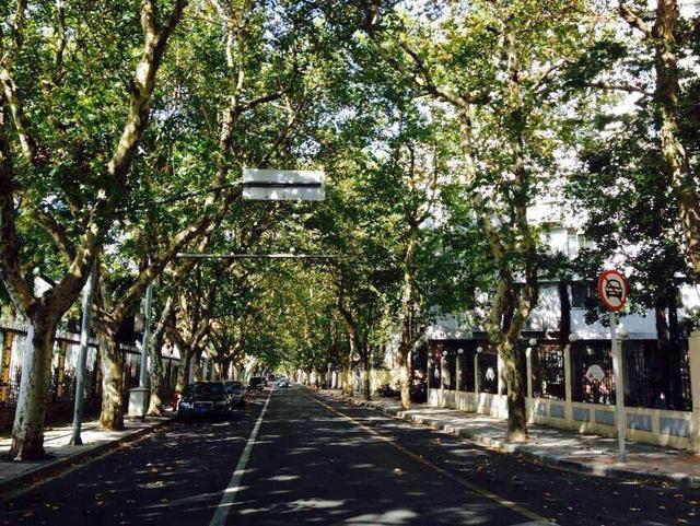 看看上海十大旅游景点,看后你肯定想留在这座城市