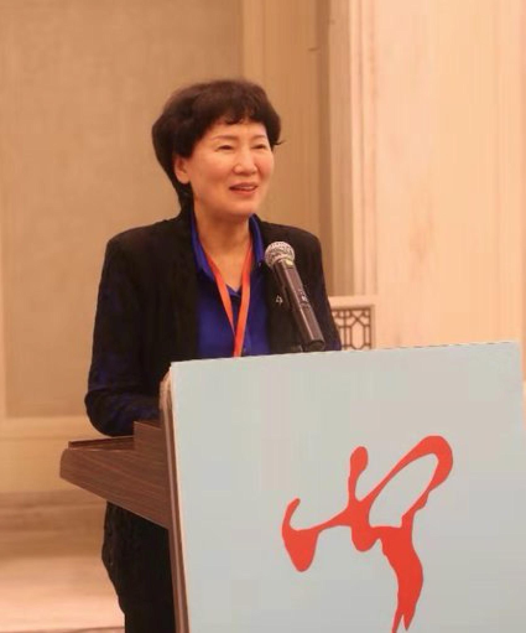 中国少数民族文化艺术促进会三届三次理事会在海口举行