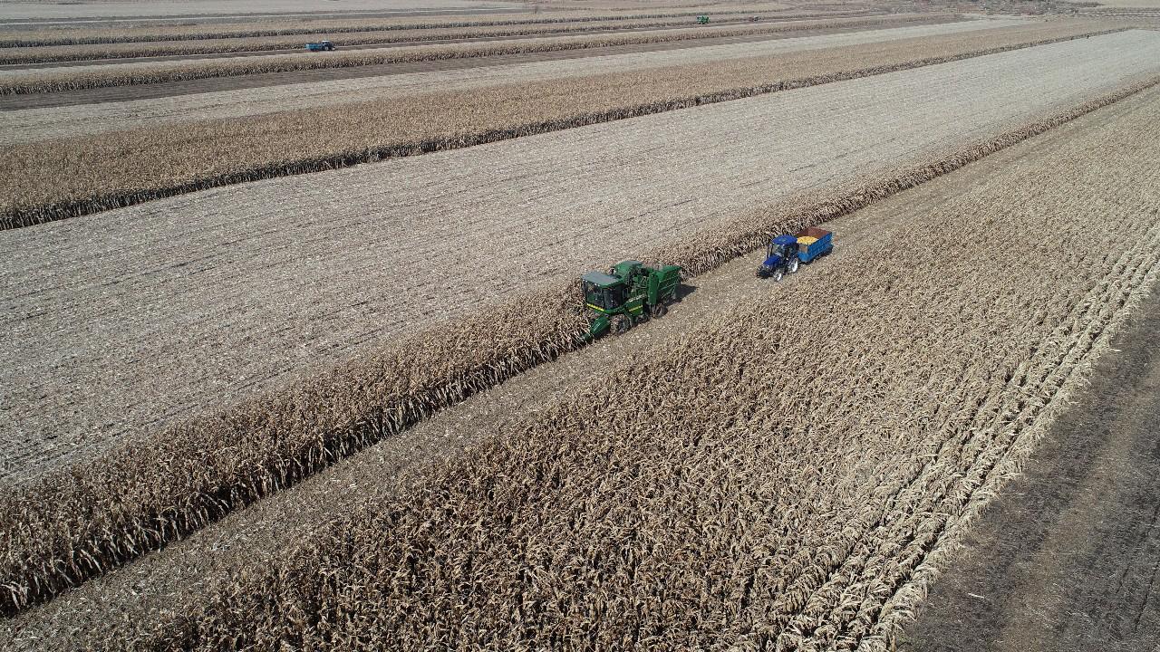 农业增产增效 农民安居乐业——公主岭市推进农村一二三产业融合发展综述
