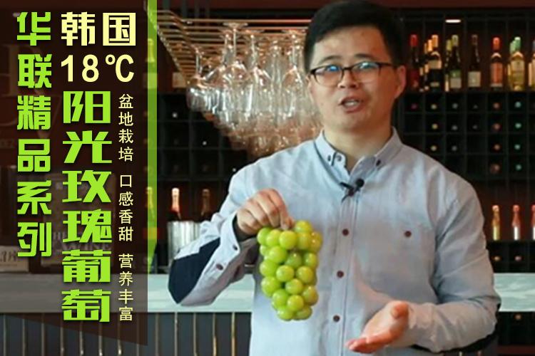 韩国18度甜阳光玫瑰葡萄