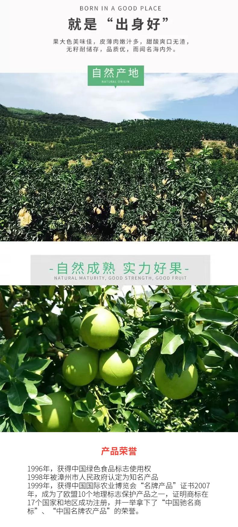 中国文化大拜年 百城文化大庙会 年货推荐——平和琯溪蜜柚礼盒(2只装)