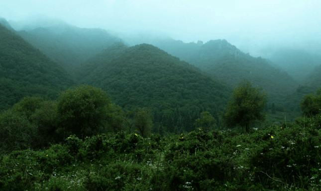 中国五大景区之一:兰州吐鲁沟