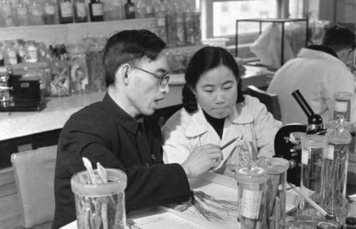 屠呦呦:青蒿素是中医药献给世界的一份礼物