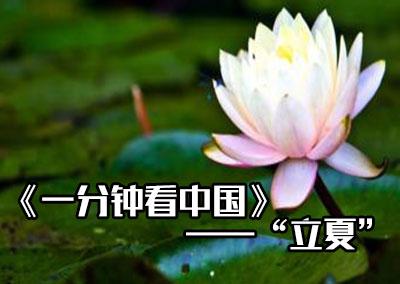 """中国传统文化二十四节气之""""立夏""""#一分钟看中国"""