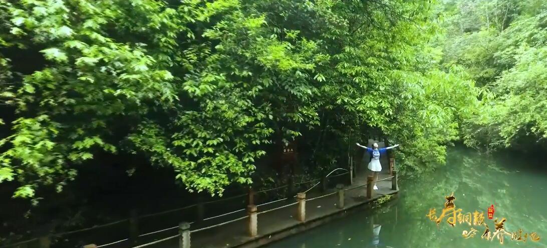 《长寿之乡 康养胜地》江西省铜鼓县文化旅游宣传片