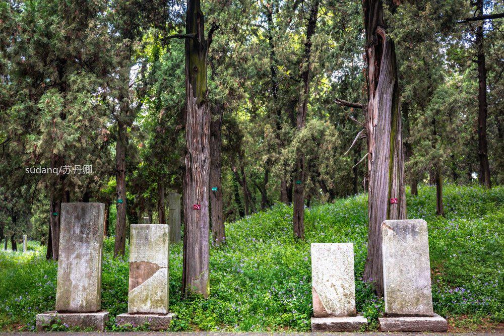 世界很大 敢不敢去墓地旅游