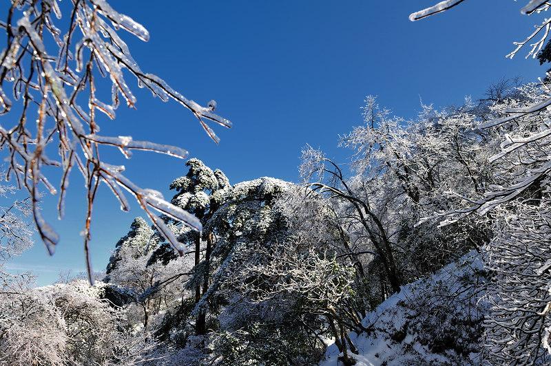 冬日的紫蓬山 简直颜值逆天
