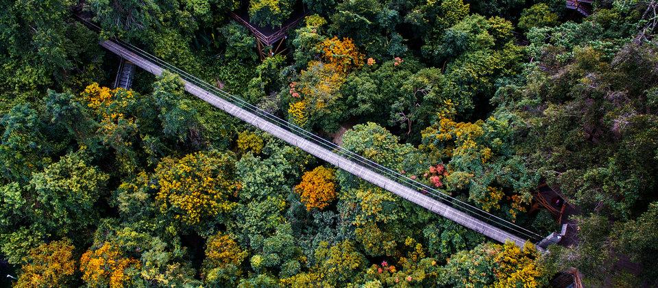 槟榔谷黎苗文化旅游区