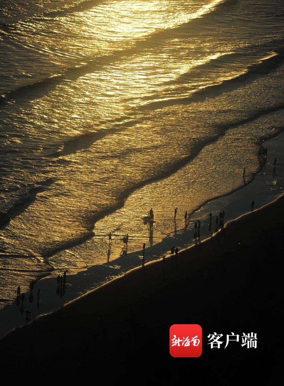 晓峰近距离   美!三亚椰梦长廊日落,一首光影与色彩的交响曲