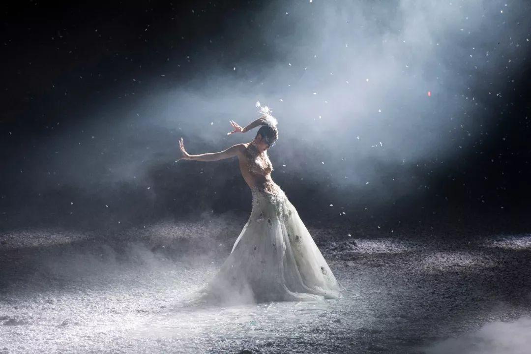 杨丽萍:以舞剧《孔雀之冬》体味生命的感悟
