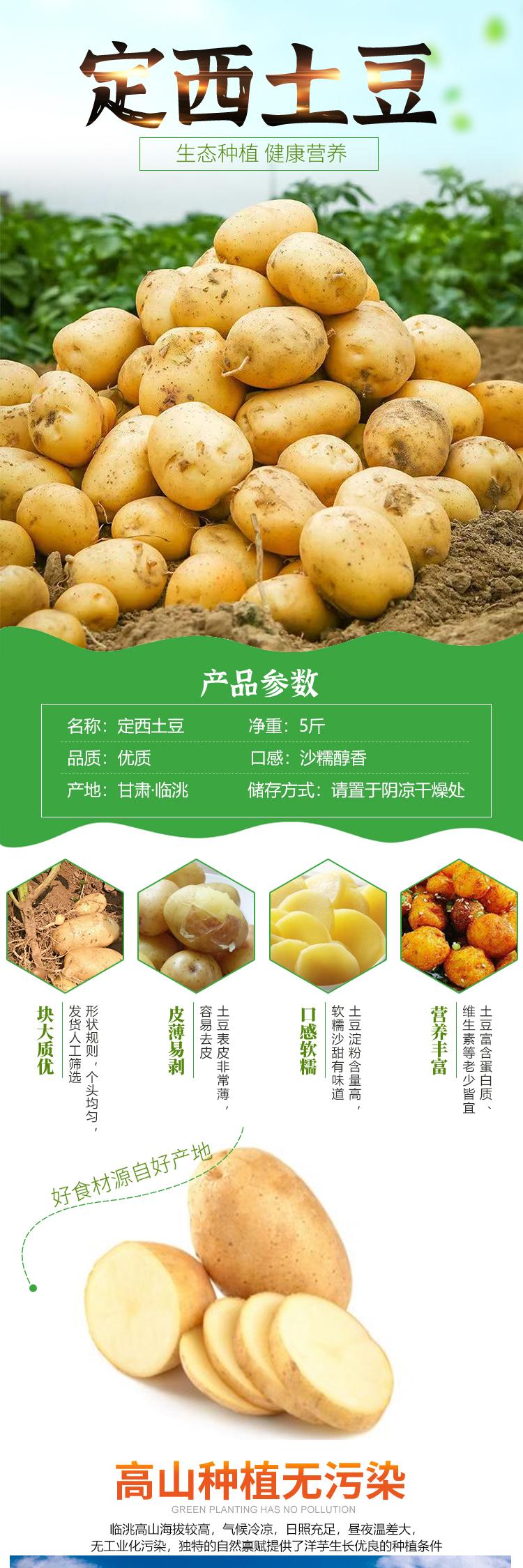 助力乡村振兴—定西新鲜土豆5斤装 现挖现发