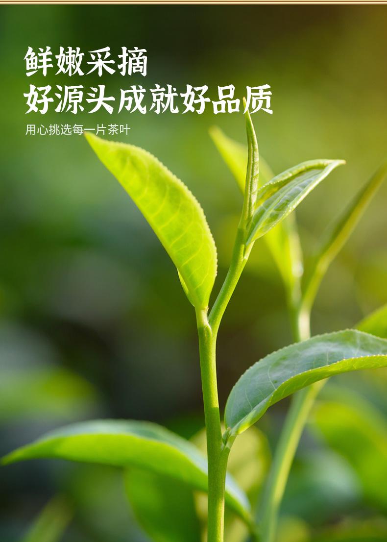 岳阳茗片紧压黄茶湖南君山特产浓香型茶叶助力乡村振兴