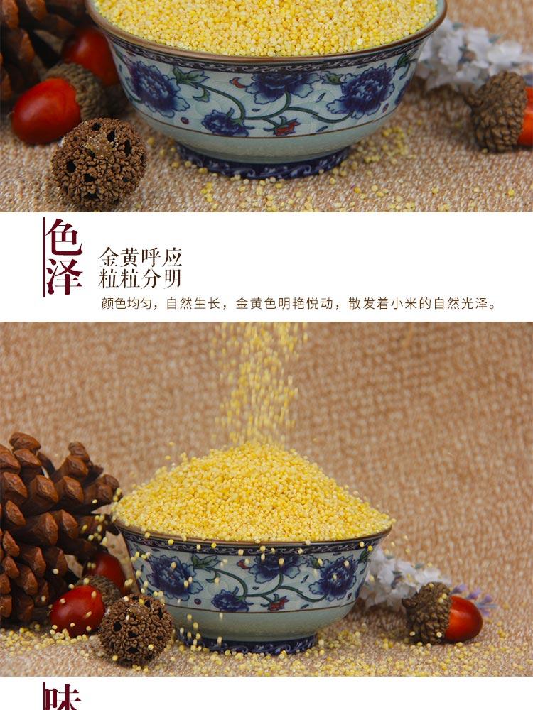 黄小米粥小黄米甘肃特产农家五谷杂粮月子吃的食用小米助推乡村振兴