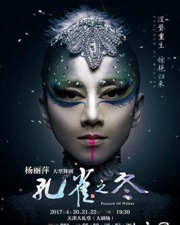 杨丽萍大型舞剧《孔雀之冬》视频