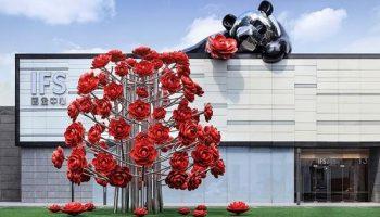 中国的友谊大使向世界展现重庆之美